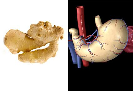 أطعمة تشبه أعضاء جسم الإنسان وتحظى بفوائد صحية كبرى