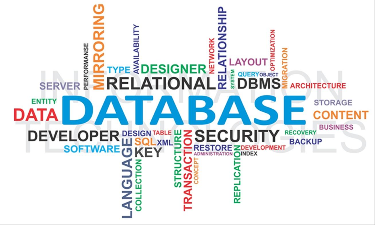 أهمية قواعد البيانات
