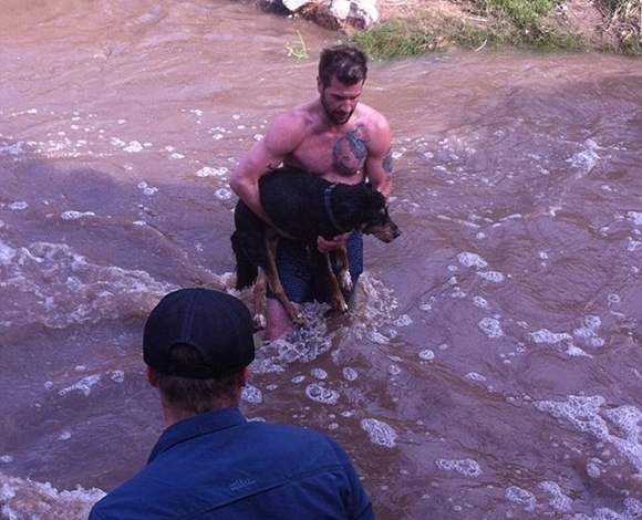 هل هذا هو الرجل المثالي؟ بطل وسيم ومفتول العضلات  ينقذ كلب !!