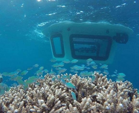 أول غواصة صغيرة تتيح استكشاف الحياة تحت المحيط بكل سهولة