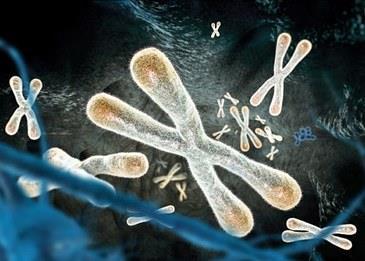 تقنية مبتكرة لوقف أعراض التقدم في السن والحفاظ على حيوية الخلايا