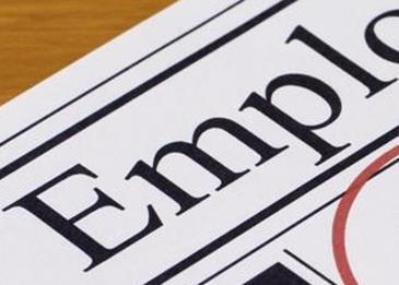 حلول لظاهرة البطالة