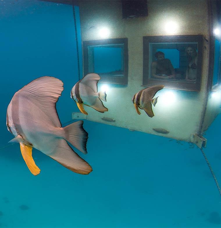 Manta resort فندق من غرفة واحدة تحت سطح الماء في عرض المحيط